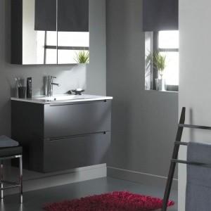 Meuble salle de bain faible profondeur lapeyre salle de - Meuble salle de bain pas cher castorama ...