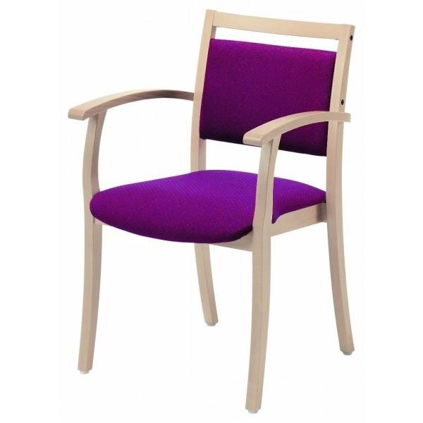 Chaise Avec Accoudoir Pour Personne Agée