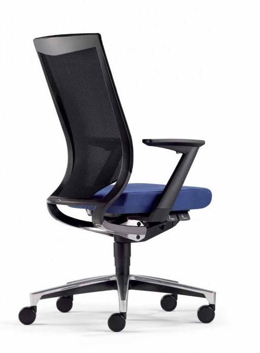 Chaise De Bureau Pour Mal De Dos