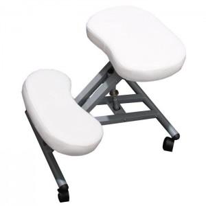 siege ergonomique bureau assis genoux avis bureau id es de d coration de maison yvbrn4vb26. Black Bedroom Furniture Sets. Home Design Ideas