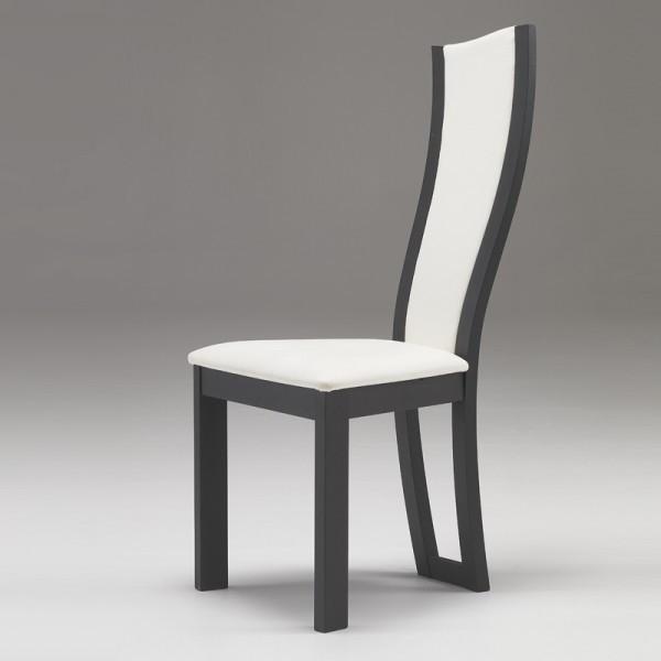 Chaises De Sejour Moderne