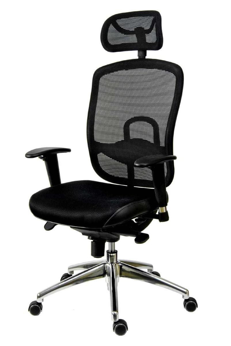 Chaise Bureau Ergonomique Dos