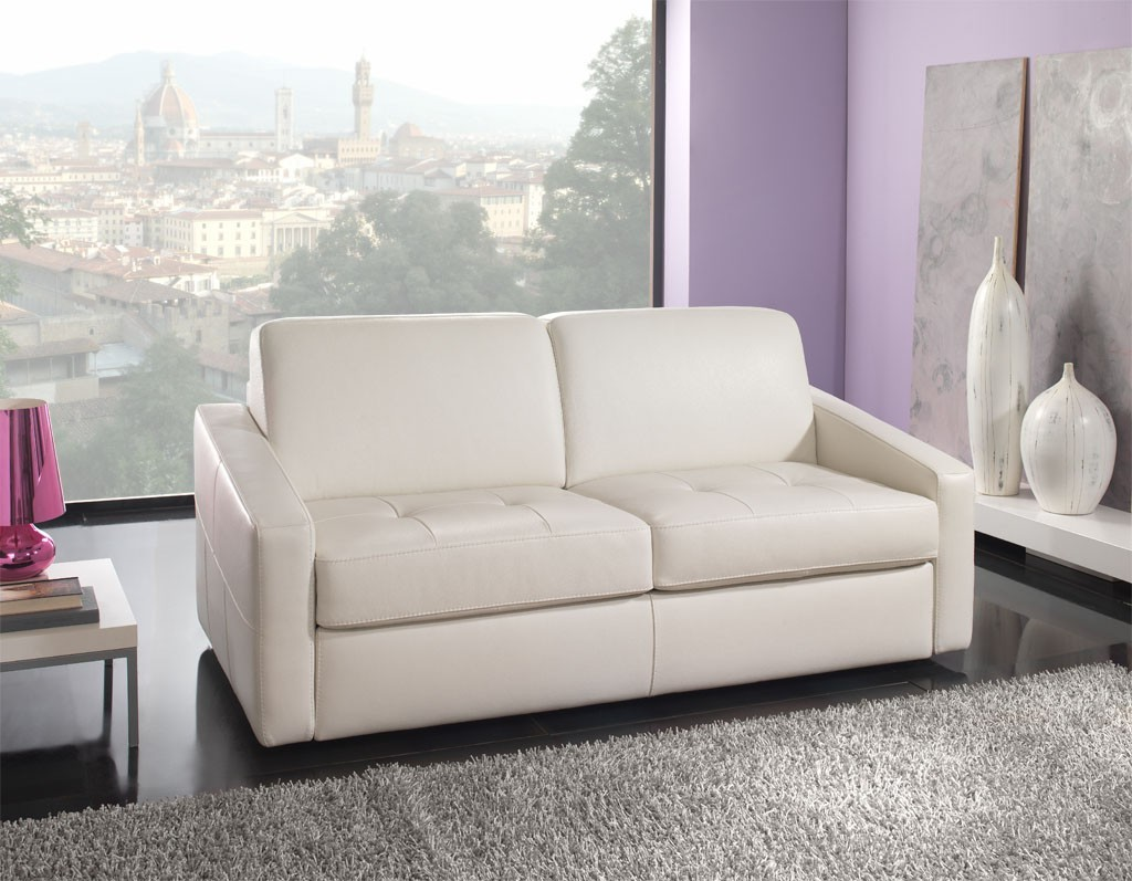 canape lit 2 places design canap id es de d coration de maison 89l7z0on2g. Black Bedroom Furniture Sets. Home Design Ideas