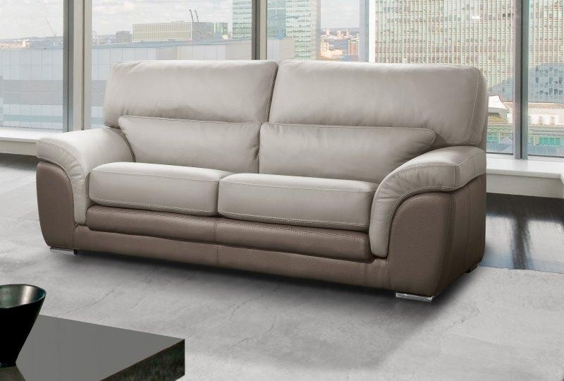 canap 2 places cuir center canap id es de d coration. Black Bedroom Furniture Sets. Home Design Ideas
