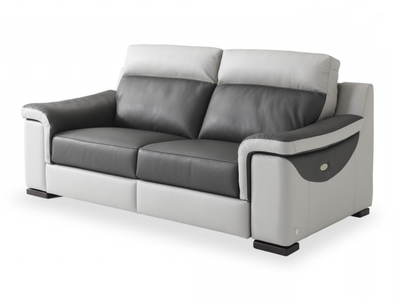 Canape Cuir Et Microfibre Relaxation
