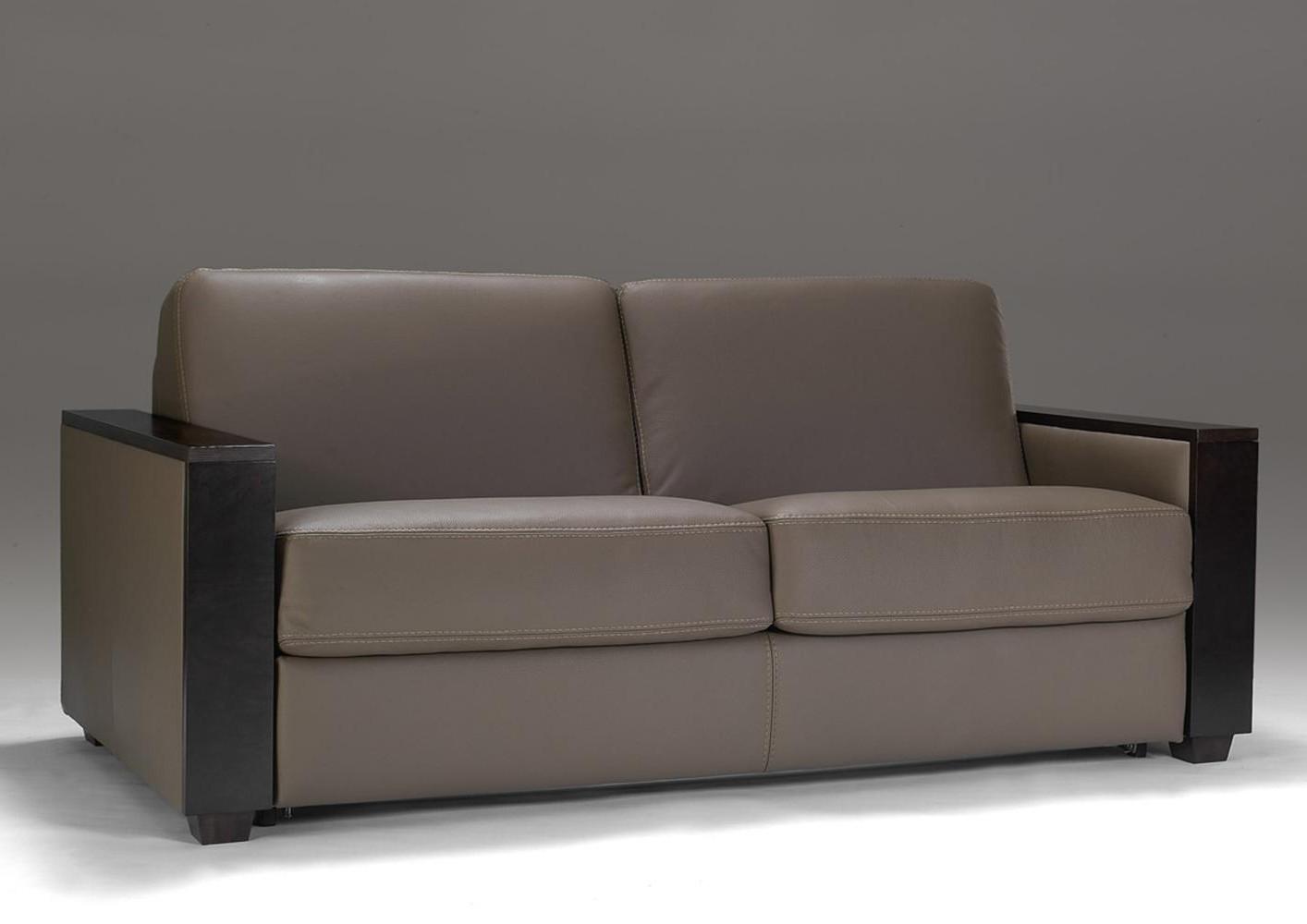 Ikea Convertible Canapé Lit 2 Places Ektorp