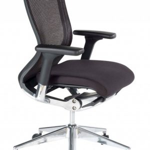 fauteuil bureau ergonomique mal de dos chaise id es de. Black Bedroom Furniture Sets. Home Design Ideas