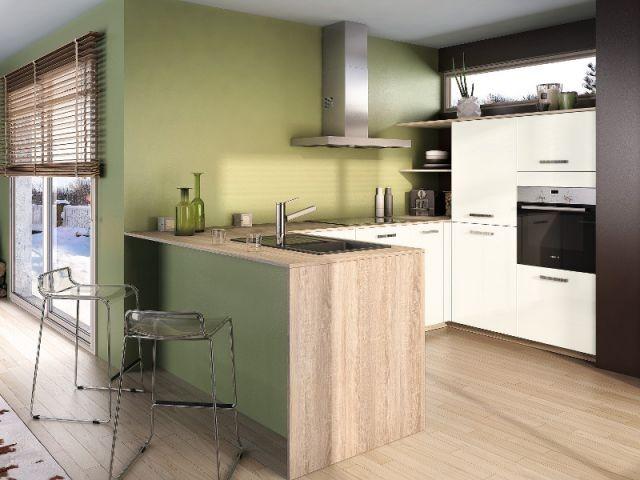Modele cuisine ouverte id es de design d 39 int rieur for Exemple de cuisine ouverte sur sejour