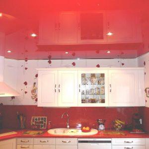 Plafond Pvc Pour Cuisine